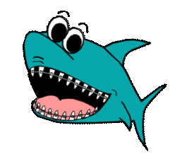 Willy Wires Shark Logo
